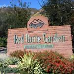 Red Butte Garden Concerts